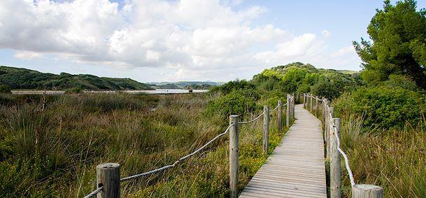 Parc naturel de S'albufera des Grau - Minorque