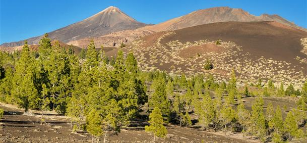 Pico du Teide - Tenerife