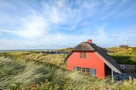 Le Danemark haut en couleur -