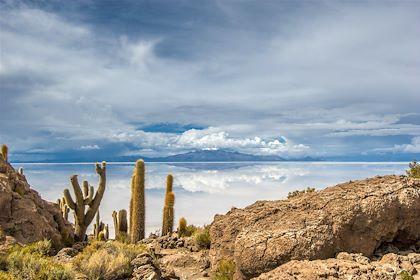 Île Incahuasi - Salar de Uyuni - Bolivie - Javarman/fotolia.com