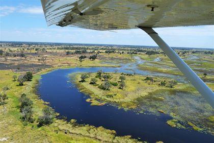 Delta de l'Okavango - Botswana - Astride Ayrole