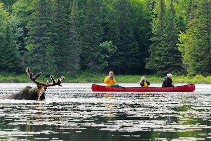 Parc Algonquin - Muskoka - Ontario - Canada - Voyageur Quest/Commission canadienne du tourisme