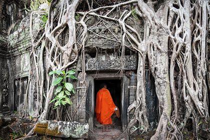 Moine à Angkor Wat au Cambodge - Banana Republic/stock.adobe.com