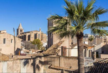 Eglise de Santa Cruz à Palma de Majorque - Les Baléares - Espagne - Ludovic Maisant / hemis.fr