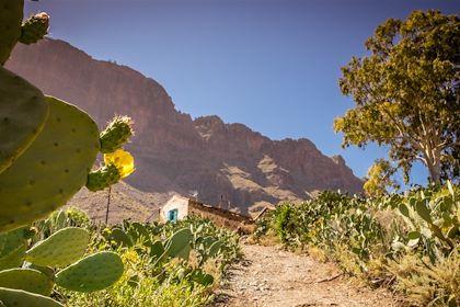 Grande Canarie - Iles Canaries - Espagne - Pawopa3336/fotolia.com