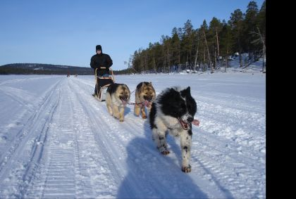 Ivalo - Laponie - Finlande - Gilles Elkaim