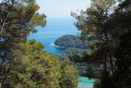 Parc national de Mljet - Île de Mljet - Croatie - Christine Busset