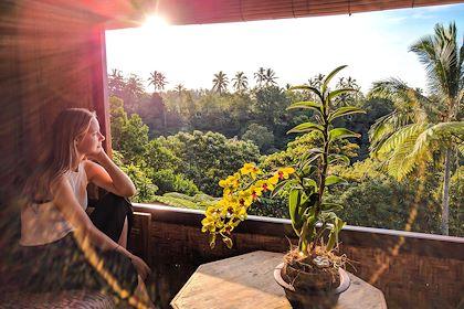 Sarin Buana Eco Lodge - Mont Batu Karu - Bali - Indonésie - Sarin Buana Eco Lodge