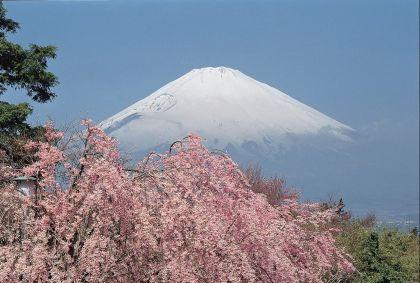 Région de Shizuoka - Japon - JNTO Japan National Tourism Organization OT