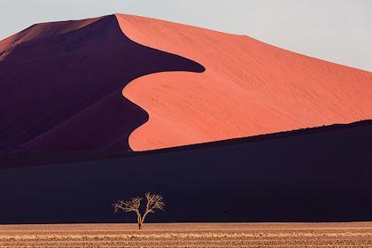Dune dans le désert du Namib - Namibie - Agota/Stock.adobe.com
