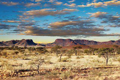 Désert du Kalahari - Namibie - Dmitry Pichugin - Fotolia.com