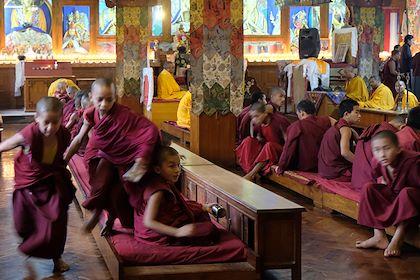 Pooja au monastère Shechen à Bodnath - Région de Katmandou - Népal - Maryline Goustiaux