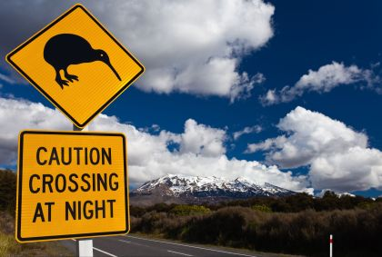 Nouvelle Zélande - PiLensPhoto / Fotolia.com