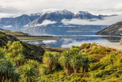 Lac Wanaka - Otago - Nouvelle-Zélande - ovgabor79/fotolia.com