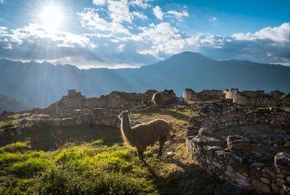 Forteresse de Kuélap - Pérou - Jhon - stock.adobe.com