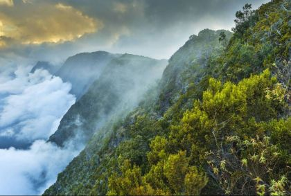 Rivière des Remparts - Saint Joseph - La Réunion - Arnaud Spani/Hemis.fr