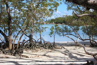 île Curieuse - Seychelles - Julie Saint-Bonnet