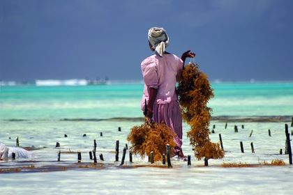 Zanzibar - Johannes Stupp / Fotolia.com