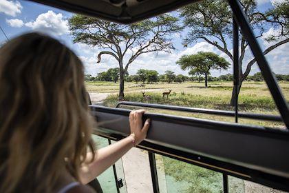 À la découverte du Parc National du Tarangire - Parc du Tarangire - Nord - Tanzanie - Pierre Vassal/HAYTHAM-REA/Comptoir des Voyages