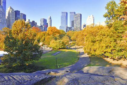 Central Park à Manhattan - New York - Etats-Unis - Robert Cicchetti/fotolia.com
