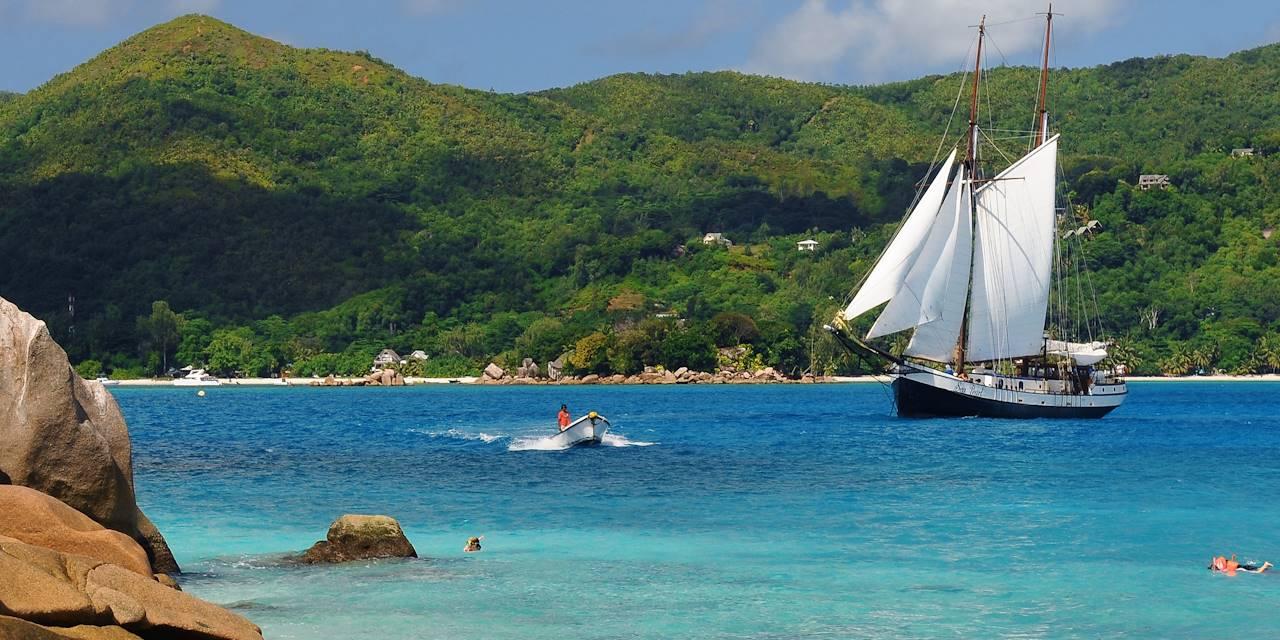 Sea Shell - Seychelles
