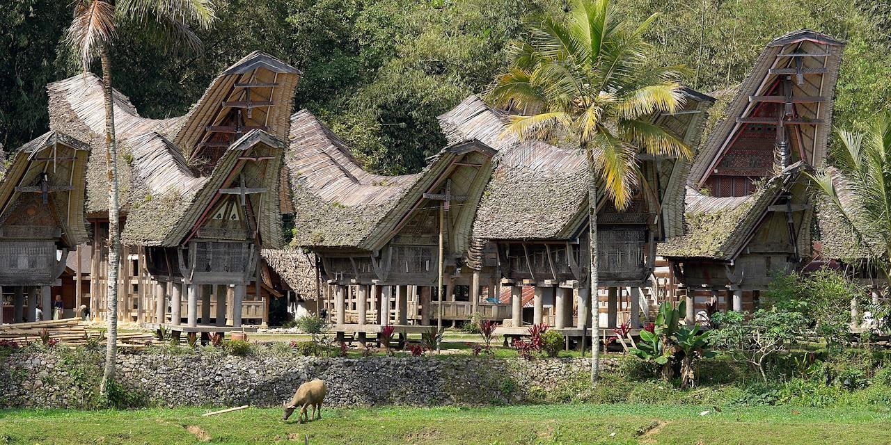 Maisons traditionnelles du pays Trojara - Célèbes - Indonésie