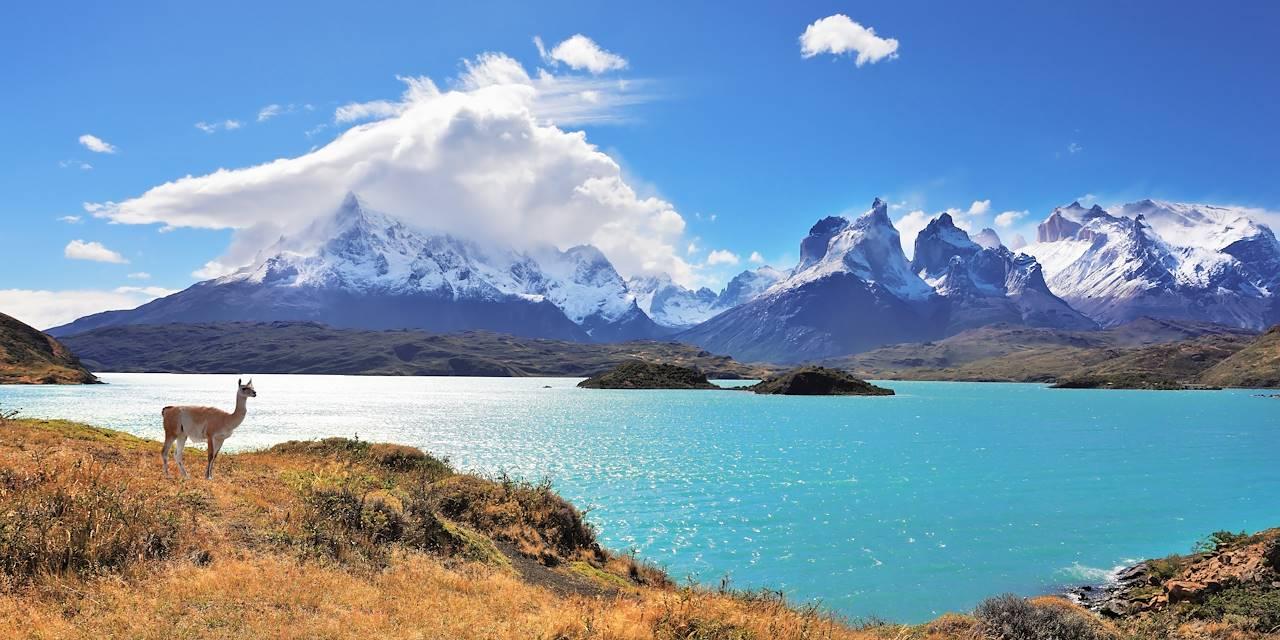 Lac Pehoe - Parc national Torres del Paine - Patagonie - Chili -  Amérique du sud