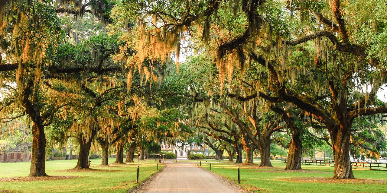 Boone Hall Plantation - Mount Pleasant - Caroline du Sud - Etats-Unis