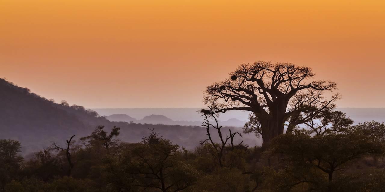 Parc national Kruger - Afrique du Sud