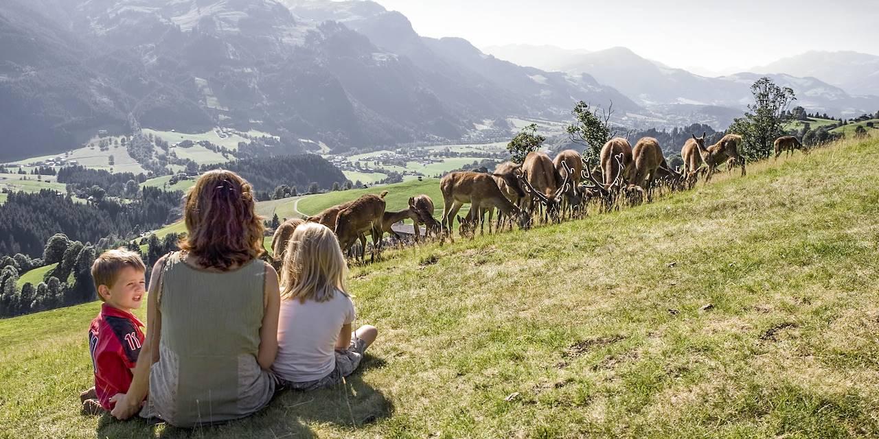 Le Tyrol en famille - Autriche