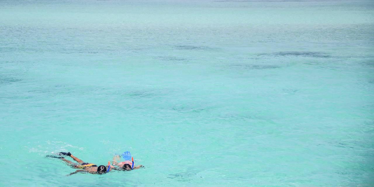 Snorkeling à Rodrigues