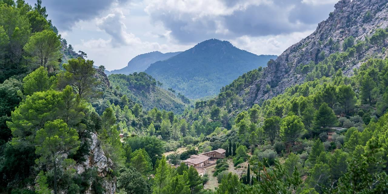 Reserve Puig De Galatzo à Puigpunyent - Majorque - Les Baléares