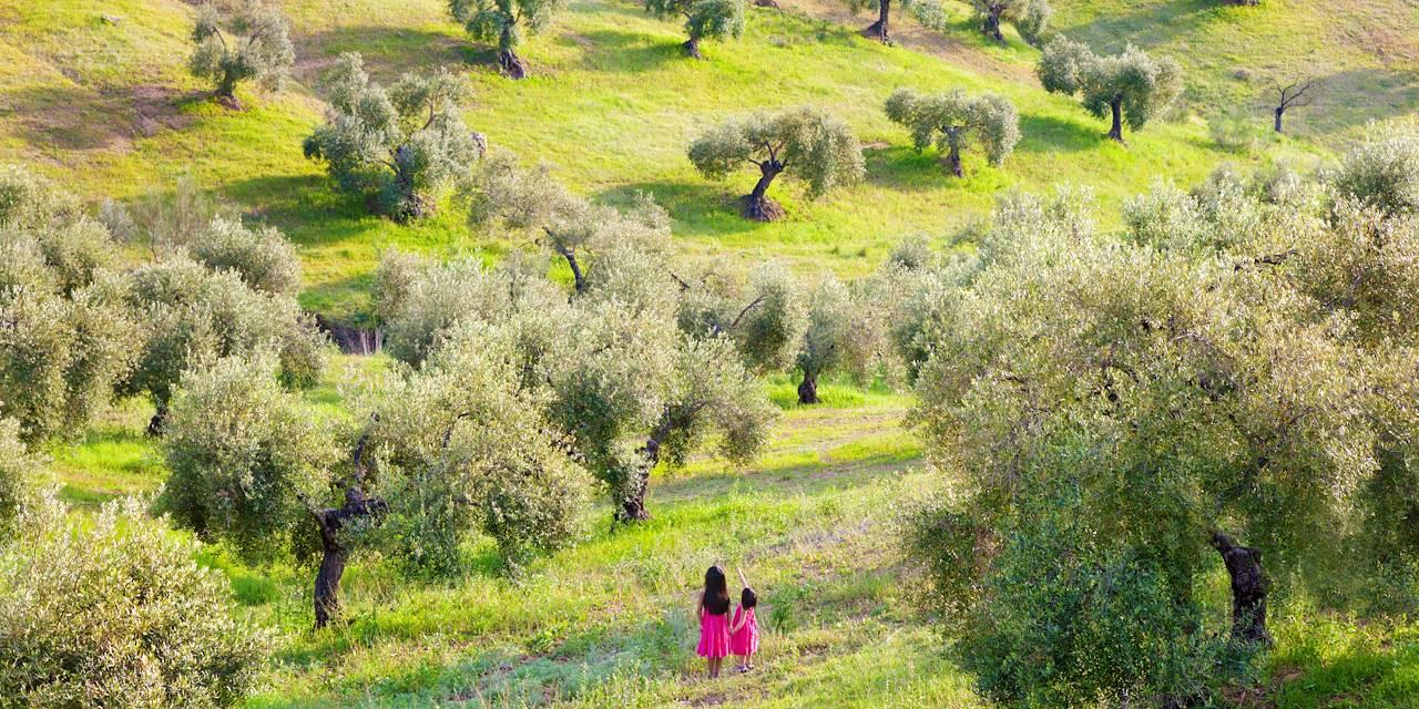 Fillettes dans un champ d'oliviers - Andalousie - Espagne