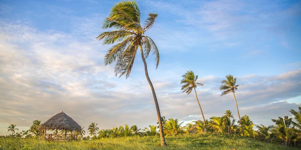 Praia do Forte - Etat de Bahia - Brésil