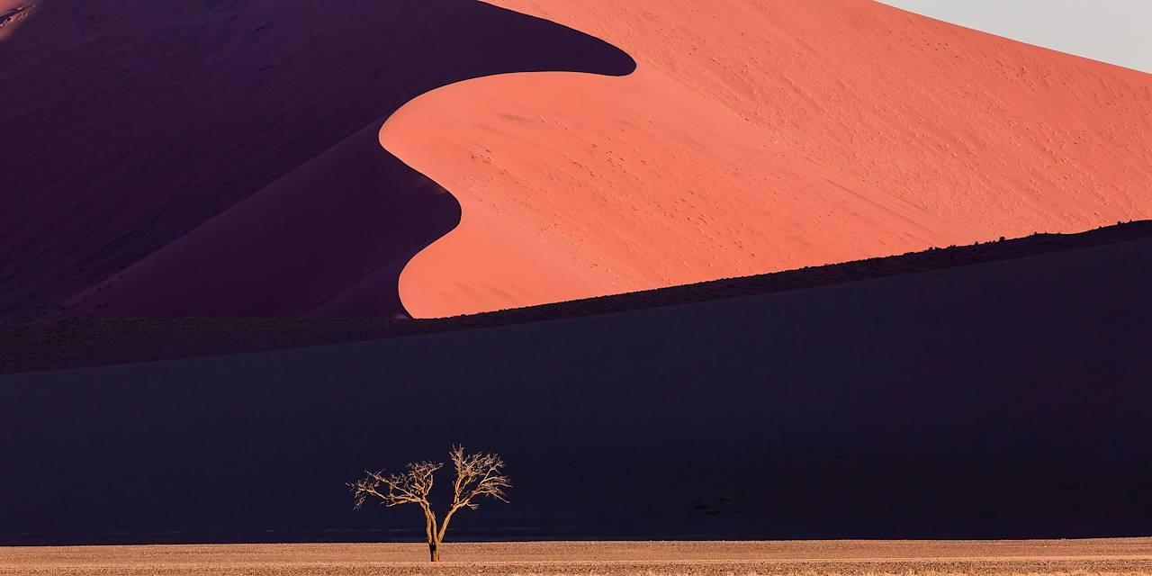Dune dans le désert du Namib - Namibie