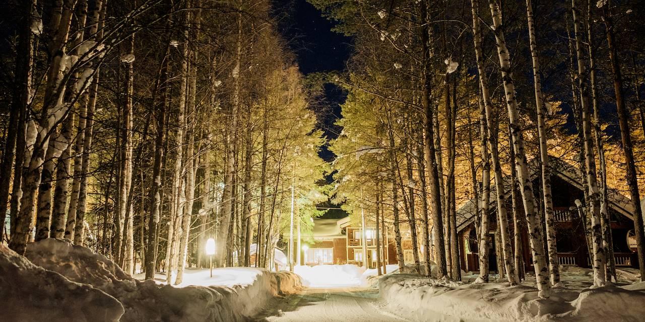 Auberge de Loma Vietonen - Rovaniemi - Laponie - Finlande