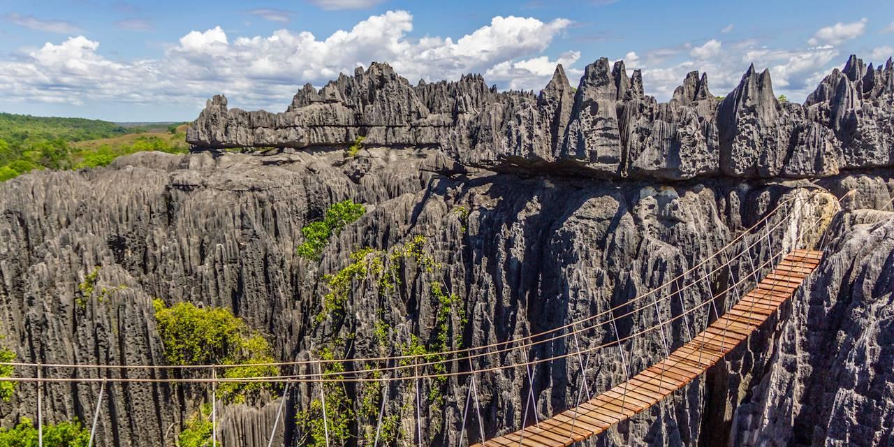 Pont de singe au parc national tsingy de Bemaraha - Madagascar