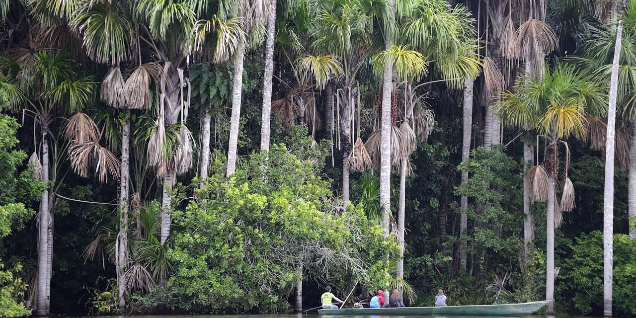 Lac Sandoval dans la réserve national de Tambopata -Amazonie - Pérou