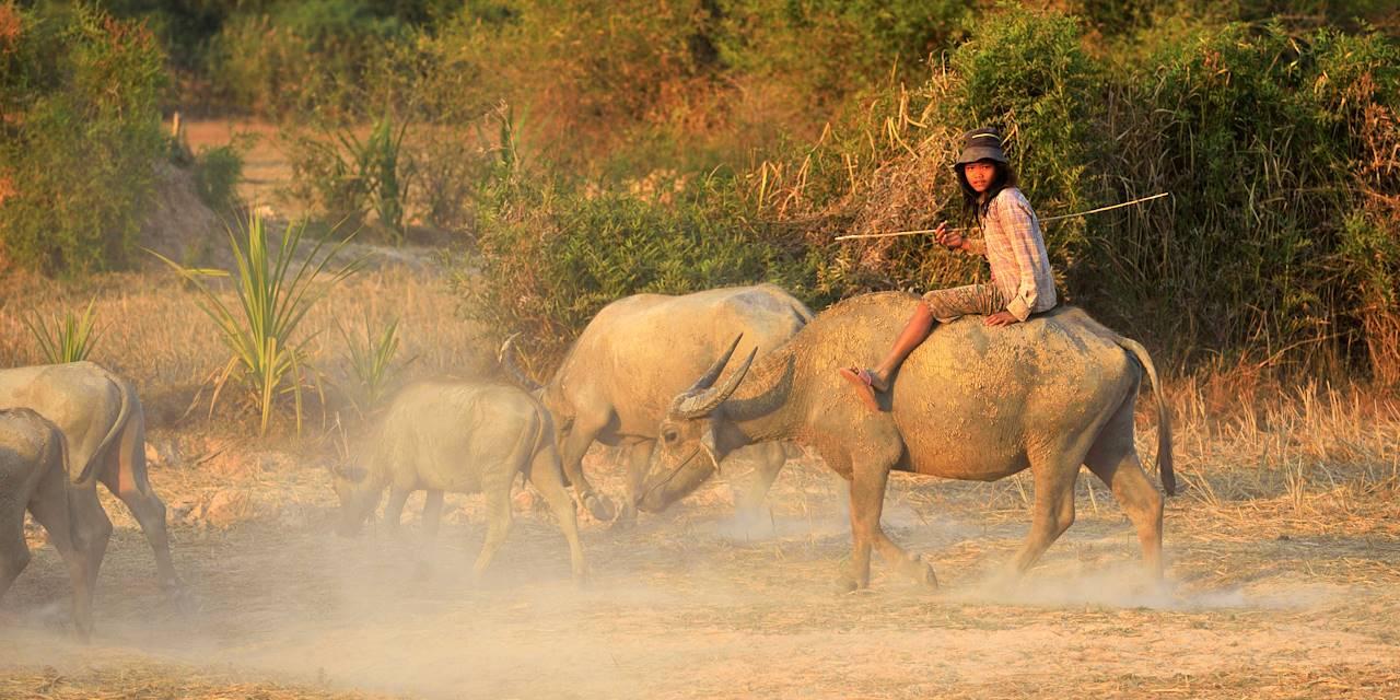 Scène de vie dans la région de Kompong Thom - Cambodge
